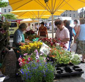 Markttag in Oelsnitz